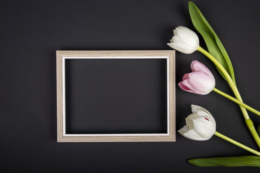 prázdny fotorámik a tulipány na čiernom pozadí